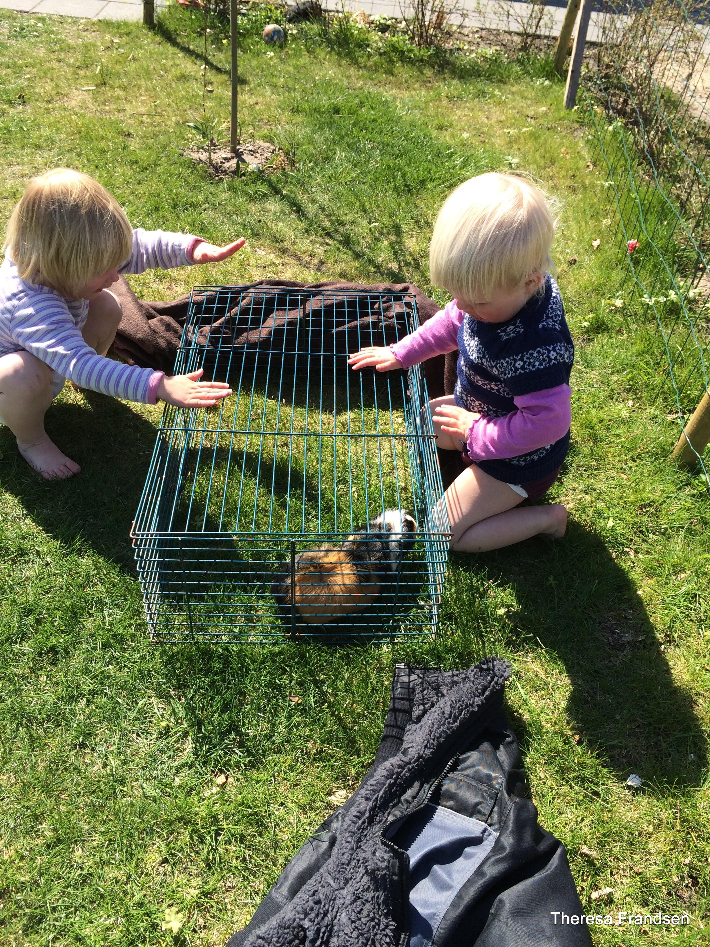 Fjord & Bælt lille pige får pik
